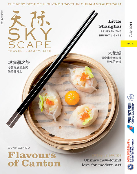 SkyScape_GuangzhouFood_SCoghill_Cover