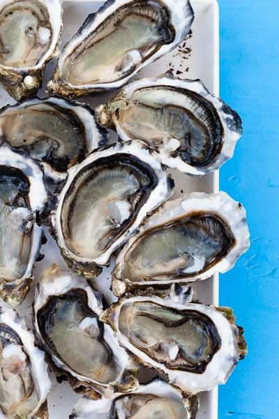 Tasmania sea food