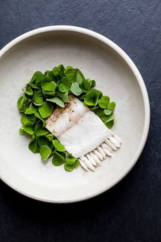 Restaurant Noma, food photography, michelin, sarah coghill
