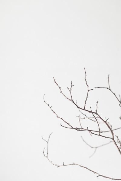 Scandinavian style photography