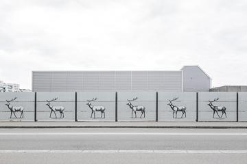 Lifestyle photography, Copenhagen Denmark, wallpaper city guide