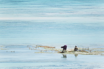 Travel Photography Zanzibar