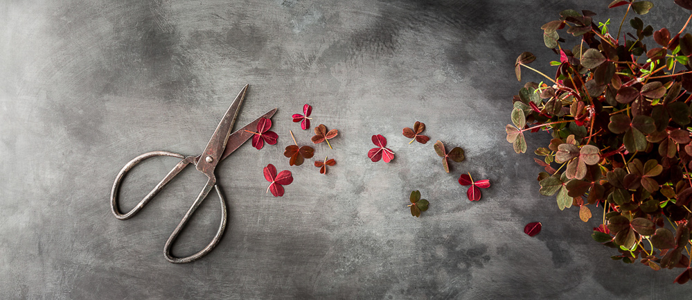 Commercial & Editlorial Food Photographer Scandinavia