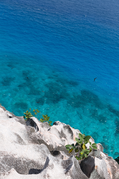 Seychelles photographer, beach, blue water, rocks